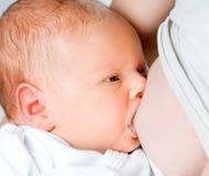 Младенец suckles стоковое изображение