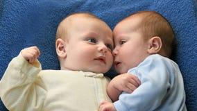 младенцы втихомолку Стоковые Фотографии RF