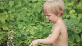 Младенец ест поленики Стоковые Фотографии RF