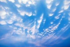 Млекопитающаяся железа любит облако Стоковые Фото