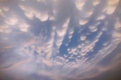 Млекопитающаяся железа любит облако Стоковая Фотография RF
