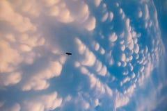 Млекопитающаяся железа любит облако Стоковые Фотографии RF