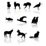 млекопитающие Иллюстрация штока