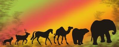 млекопитающие Стоковые Изображения RF