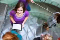 многодельные вниз спешя студенты stairway вверх Стоковые Изображения RF