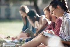 Многокультурные студенты изучая в парке Стоковые Фотографии RF