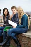 Многокультурные студенты колледжа стоковое фото rf
