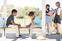 Многонациональные подростки изучая совместно Стоковые Фотографии RF