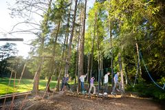 Многонациональные сотрудники пересекая отбрасывать вносят дальше лес в журнал стоковые изображения rf