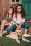 Многонациональные девушки сидя на крылечке с милым щенком labrador Стоковые Изображения RF