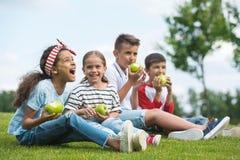 Многонациональные дети есть зеленые яблока пока сидящ совместно на зеленой траве Стоковая Фотография RF