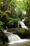 Многоуровневые водопады -- Вертикально стоковая фотография