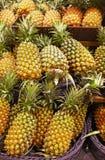Много ананасов положили в кронштейн Стоковые Изображения RF