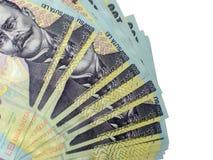 Много банкнот 100 румынских леев Стоковое Фото