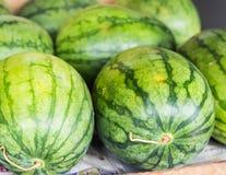 Много больших сладостных зеленых арбузов Стоковое Фото