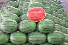 Много больших сладостных зеленых арбузов Стоковое Изображение