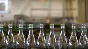 Много бутылок на конвейерной ленте