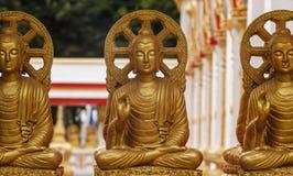 Много Будда Стоковые Изображения RF