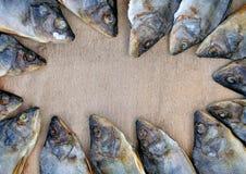 Много высушенных окуней аранжированных в круге Стоковые Фотографии RF