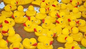 Много желтых резиновых уток плавая в воду Стоковые Изображения