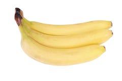 Много желтый изолированный банан Стоковое Изображение