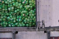 Много зеленая капуста в сумках Стоковые Изображения