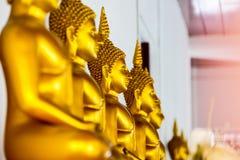 Много золотых изображений Будды Стоковое Изображение RF