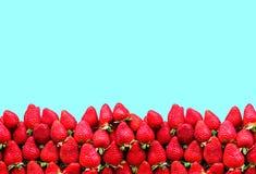 Много зрелые клубники с космосом для текста на голубой предпосылке Концепция здоровой еды Стоковые Фото