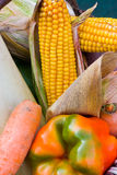 Много зрелых овощей Стоковая Фотография RF