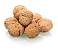 Много из всех грецких орехов изолированных на белизне Стоковое Изображение