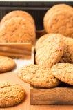 Много из печений овсяной каши в деревянном boxe 2 Стоковая Фотография