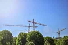 Много краны высотного здания промышленные на предпосылке голубого неба и зеленых деревьев стоковые фотографии rf