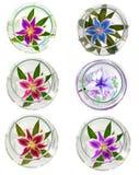 Много красивые лилии без предпосылки, лилии цветков изолированные в больших количествах Стоковое Изображение RF