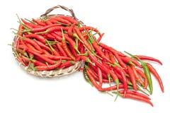 Много красные chili, горячий и пряный на таблице для выбирать и варить Стоковые Изображения RF