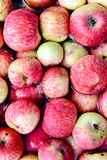 Много красных яблок плавая в воду Стоковая Фотография