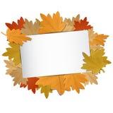 Много красочная осень Leafes с Copyspace внутрь Стоковое Изображение