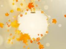 Много красочные листья на светлом шаблоне предпосылки Яркие листья осени дуб, рябина, клен падают вниз 10 eps иллюстрация вектора