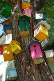 Много красочные покрашенные birdhouses на стволе дерева стоковое изображение rf