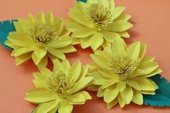 Много красочных бумажных цветков на предпосылке с ровным surfac Стоковые Фото