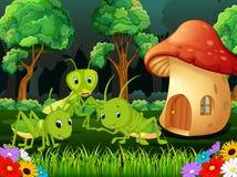 Много кузнечик и дом гриба в лесе Стоковое Изображение RF