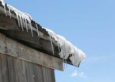 Много морозят сосульки на крыше которые плавят Стоковое Изображение