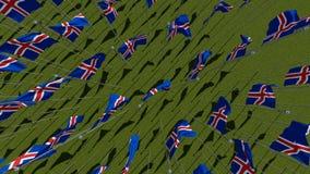 Много национальных флагов Исландии развевая на ветре в зеленом поле иллюстрация вектора