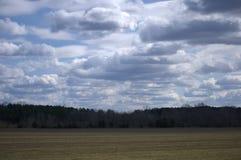 Облака кумулюса Стоковое Изображение RF