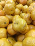 Много оранжевая предпосылка Стоковая Фотография