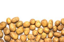 Много пакостные картошки на белой предпосылке Стоковое фото RF