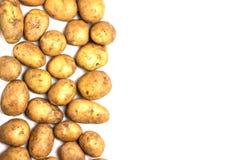Много пакостные картошки на белой предпосылке Стоковая Фотография