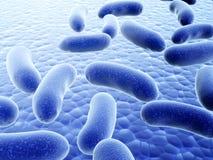 Много патогенических вирусов Стоковое Изображение RF