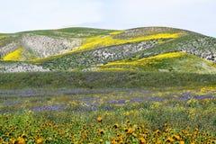 Много покрашенных холмов Стоковая Фотография RF