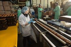 Много продукция сладостной фабрики еды торта массивнейшая Стоковое Изображение RF