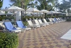 Много пустых кресел для отдыха бассейна Стоковые Изображения